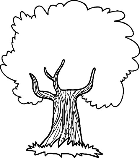 coloring page of a apple tree astonishing a cute apple tree coloring page apple tree