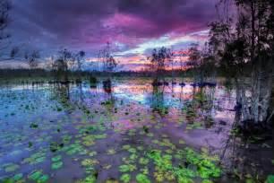 Cattai wetlands 187 greater taree city council