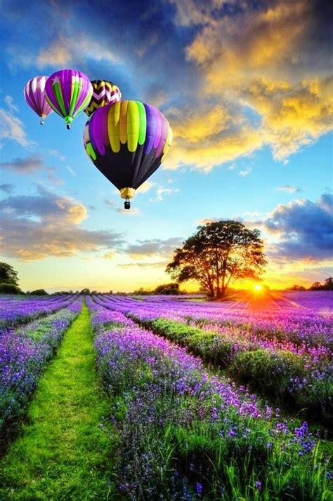 beautiful com beautiful hot air balloons pinterest