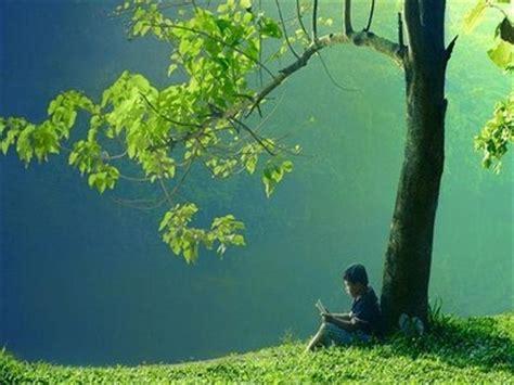 Imagenes De Tranquilidad Reflexivas | asi es que suena la tranquilidad taringa