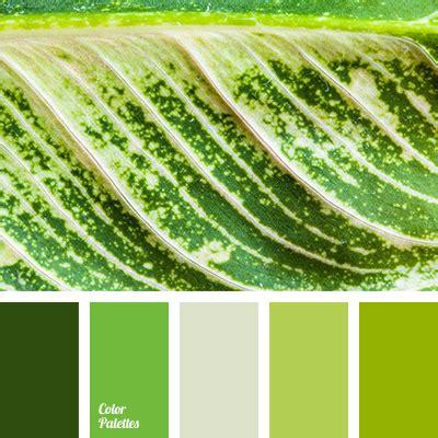 green combination color color palette 2780 color palette ideas combination