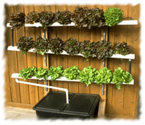 indoor hydroponic wall garden wall mounted nft system indoor gardening pinterest