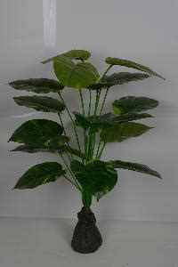 decorative plants with name in india decorative artificial plant in bangalore manufacturers