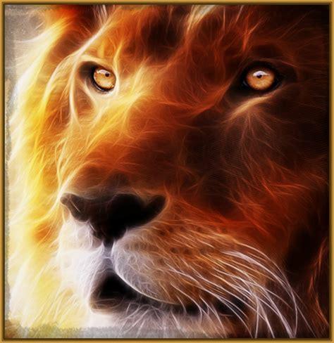 imágenes de y mas im 225 genes de leones para colorear archivos imagenes de leones