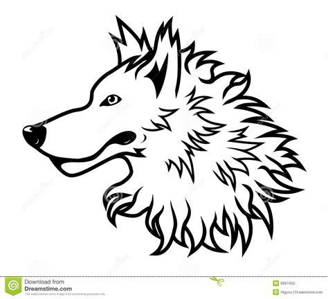 wei 223 er wolf kopf stockfotografie bild 9997452