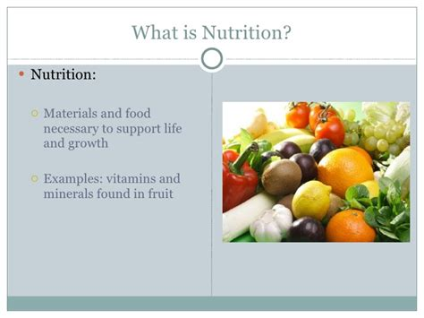 templates powerpoint nutrition nutrition powerpoints nutrition ftempo