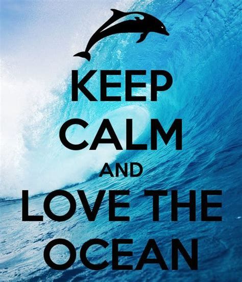 imagenes de keep calm and love horses 25 best ideas about keep calm on pinterest keep calm