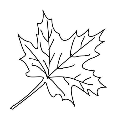 small leaves coloring pages