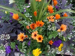 living flower arrangements living flower arrangements that you can enjoy all summer