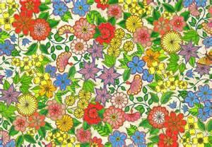 secret garden coloring book author flowers from the garden bailey studio
