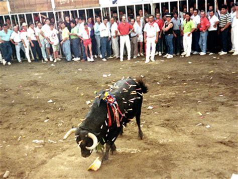 toro de coria el mundo animal toro de san juan de coria