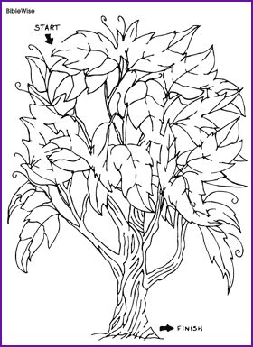 Coloring Page Vine And Branches by Photos Bild Galeria Coloring Page I Am The Vine