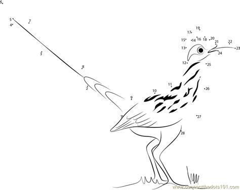 roadrunner printable greater roadrunner geococcyx californianus dot to dot