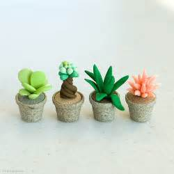 Clay Pots For Plants Joojoo Miniature Succulent