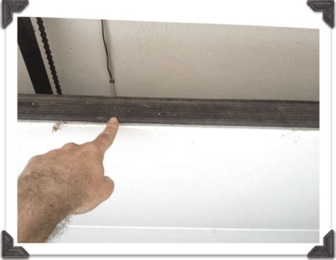 Weather Stripping For Garage Door by For Door Bottom Weatherstrip For Wiring Diagram And