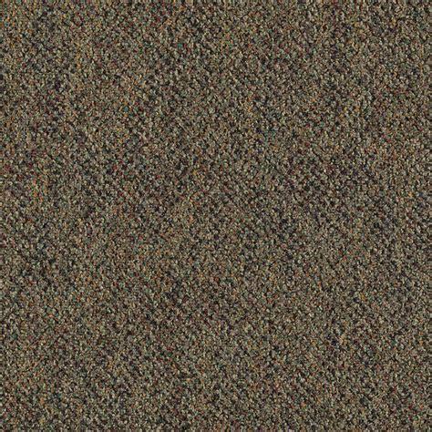leaf pattern carpet trafficmaster carpet sle brainstorm color fig leaf