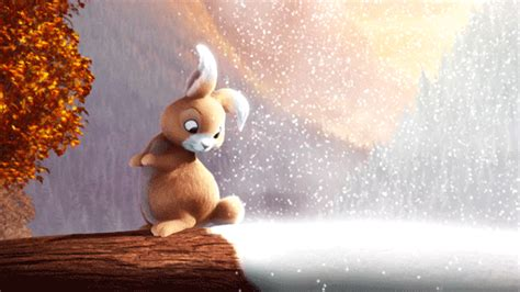 gif format images free download funny bunny gif animation gallery yopriceville high