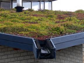green roof boston green blog guest post the benefits of living roofs for cities