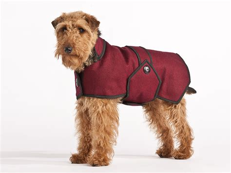 jacket for dogs winter coats jackets winter coats for dogs breeds picture