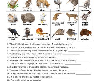 native australian animals for kids