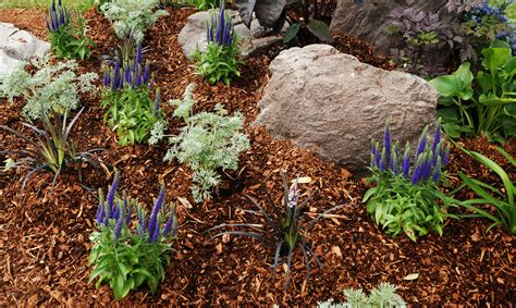 types of mulch for gardens the pros and cons of different types of mulch sacramento
