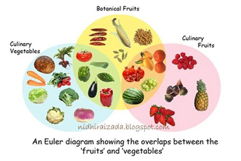 r tomatoes fruit or vegetables difference between fruit and vegitable is a tomato fruit