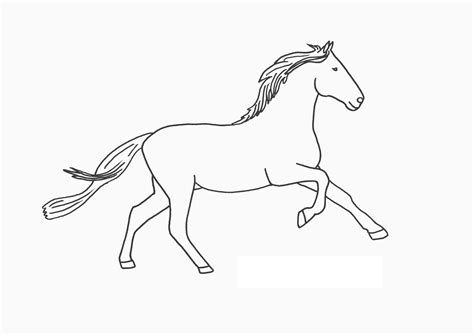 coloring pages of baby horses free coloring pages for