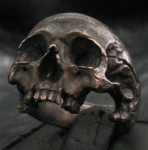 into the jewelry skull ring standard decayed half jaw