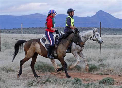 Sho Kuda Liar olahraga bareng kuda ada kok nih buktinya loop co id
