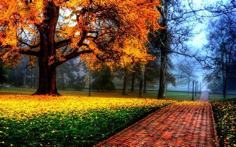 autumn landscapes 2 wallpapers colorful fall landscapes clouds landscapes nature trees multicolor seasons
