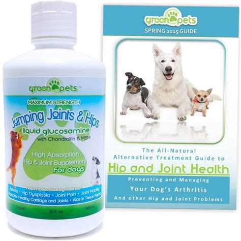 best joint supplement for dogs the best joint supplement for dogs keeping your mobile herepup