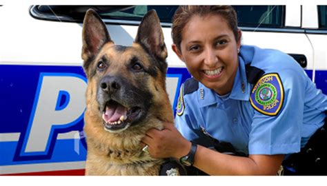 How To Become A Officer With A Criminal Record K9 Officer Career And Information