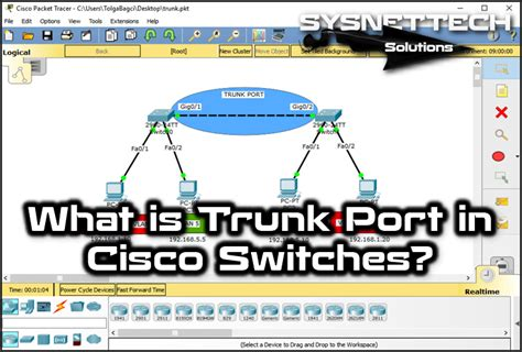 what is a port what is trunk port in cisco switches images video