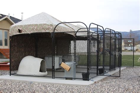 boarding houses for dogs house boarding kennels 28 images the real apbt kennel setups house setups a frame