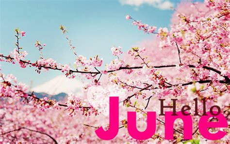 ? Top 14 June images, greetings and pictures for WhatsApp