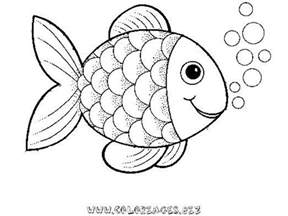 rainbow fish coloring page preschool rainbow fish coloring sheet to print for free