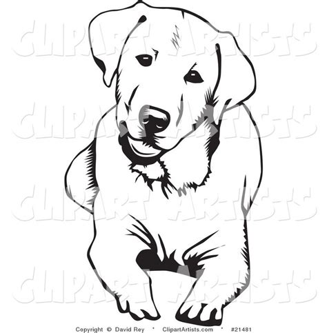 lab hunting dogs coloring pages coloring pages