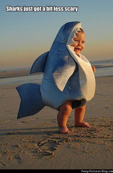 baby shark jokes cute baby shark