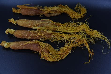 Ginseng China 1 2 lb panax korean ginseng root china roter