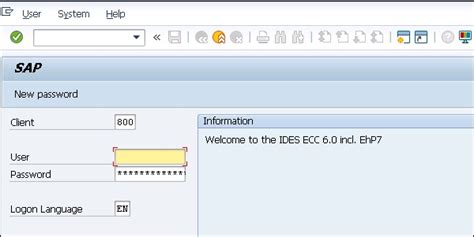password reset tool in sap sap security quick guide