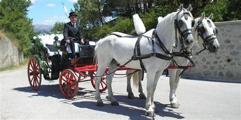 carrozza con cavalli giro in carrozza gratis con uberclop omaggiomania