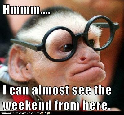 I Can Almost See The Weekend Pictures, Photos, and Images for Facebook, Tumblr, Pinterest, and