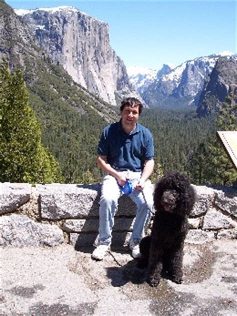 are dogs allowed in yosemite friendly yosemite national park california