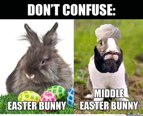 Cute Easter Meme - 30 funny happy quot easter memes quot 2018 bunny meme pictures