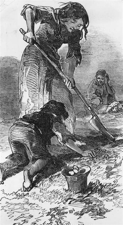 The Great Irish Famine - An Overview