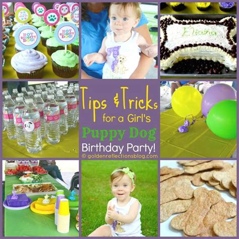 pet themed kids parties best kids party supplies tips tricks to throwing a girl s puppy dog themed