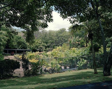 Nui Botanical Gardens by Brendan George Ko