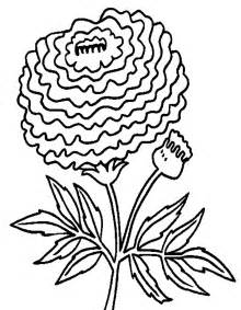 fiori immagini disegni foto di fiori da colorare gratis