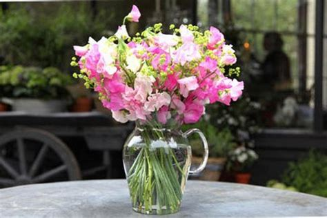 How To Arrange Flowers In Vase by Arranging Flowers In A Vase Helpful Tips Www Tidyhouse