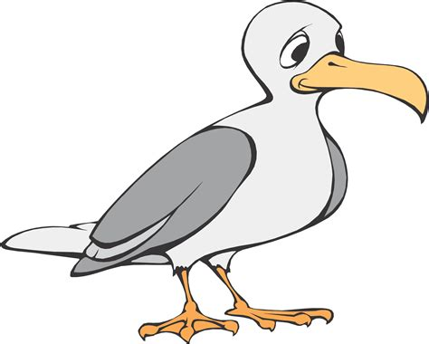 Drawings Of A Sea Bird Clipart Best | drawings of a sea bird clipart best